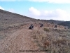queilesaventura-ruta-quad-navarra0020bardenas_24_02